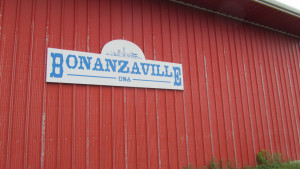 It's hard to accurately describe Bonanzaville in West Fargo. It's the dustiest, most raggledy-paggledy museum we've ever been to, but there is something for everyone here. There are authentic pioneer houses, a 1950s creamery, many other buildings (jail, courthouse, schoolhouse, homes from different eras), a huge tractor warehouse and an airplane hangar.